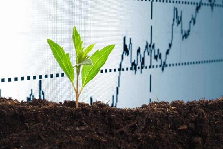 Эксперты отмечают, что в мировом сельском хозяйстве присутствует проблема недостаточного внесения калия в почвы, - то есть потенциал, у калийного рынка есть. (photo: )