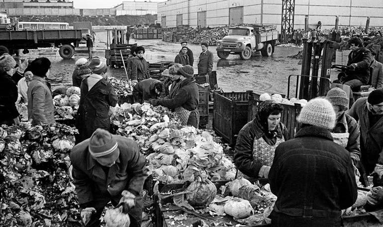 Овощную торговлю в СССР, которая осуществлялось через сеть овощных баз, в народе называлась «гнильторгом».  Фото moskva-bez-prik.livejournal.com