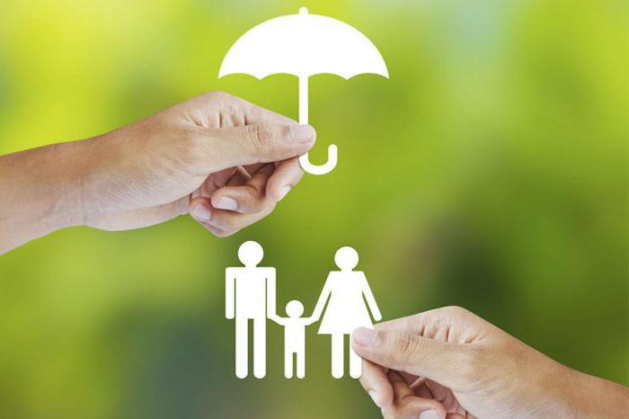 отчисления на добровольное страхование
